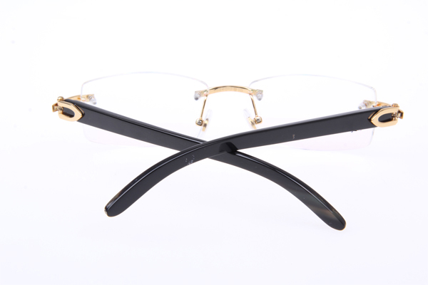 CT 3524012 Black Buffalo Eyeglasses In Gold